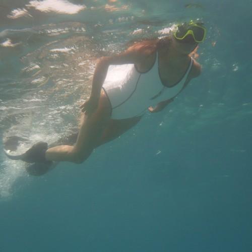 Snorkelling Lonestar Catamaran