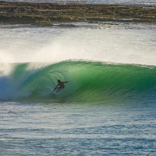Surf Rote Lonestar Catamaran